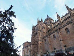 Visita guiada en Salamancaca